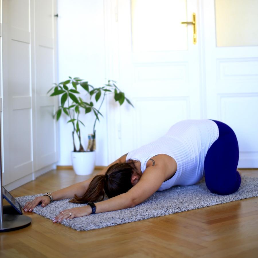 Übung T0B8524 – Rückenstrecker